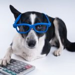 Dennis Fritz's Under-Utilized Pet Tax Deductions